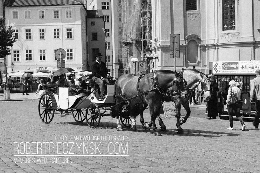 _DSC9749 - robert pieczyński photography wedding ślub wesele fotograf fotografia praga prague praha warszawa szczecin stargard poznań wrocław